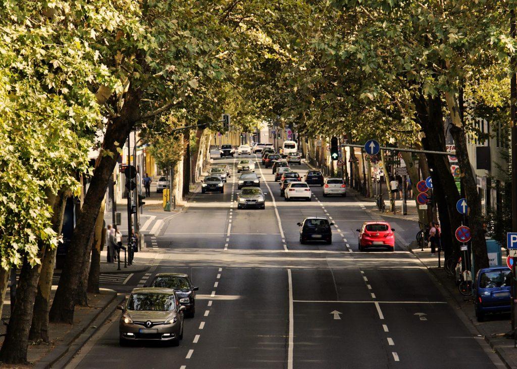Dwukierunkowa czteropasmowa droga pod klonowymi drzewami